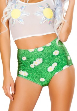 Daisy High Waist Shorts