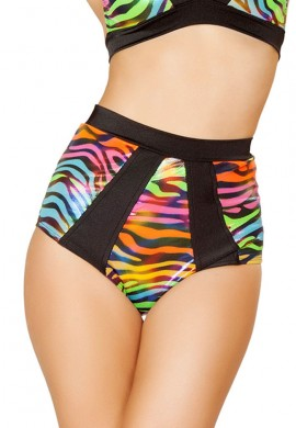 Rainbow Zebra Panel High Waisted Shorts