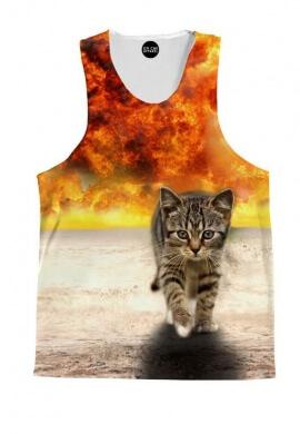 Kitty Explosion Tank