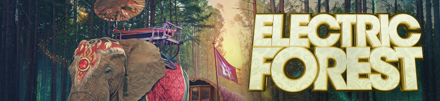 Electric Forest ouffits