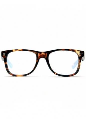 Tortoise Shell Wayfarer Diffraction Glasses