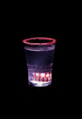Sidekick Shot Glass