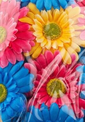 Flower Child Hydration Pack