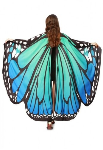Blue and Green Butterfly Wings
